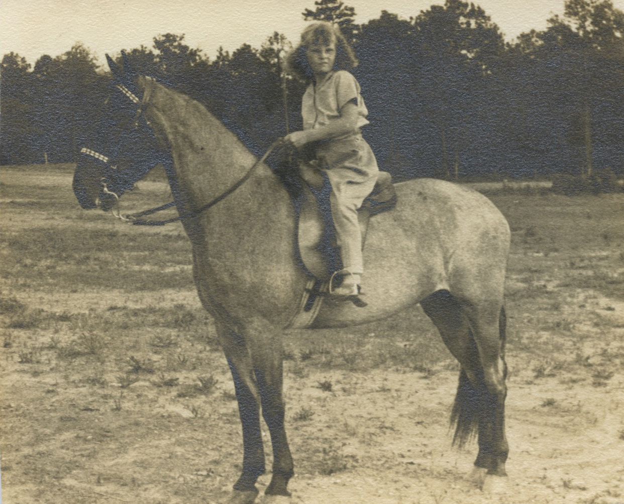 Suzanne on horse
